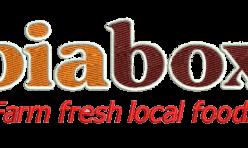 Biabox work logo embroidered by Robin Archer