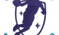 Limerick Lakers Club Badge embroidered by Robin Archer Limerick